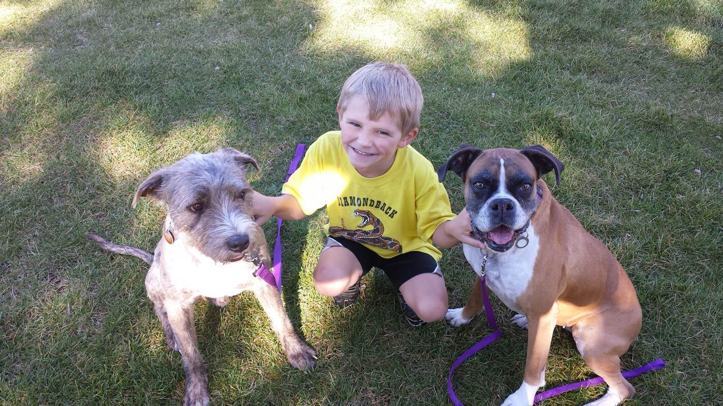 JD Woofter's son with their two family dogs